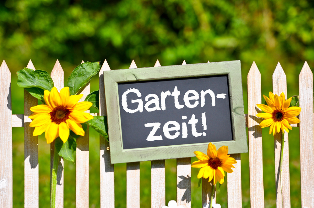 Gartentipps für Juni