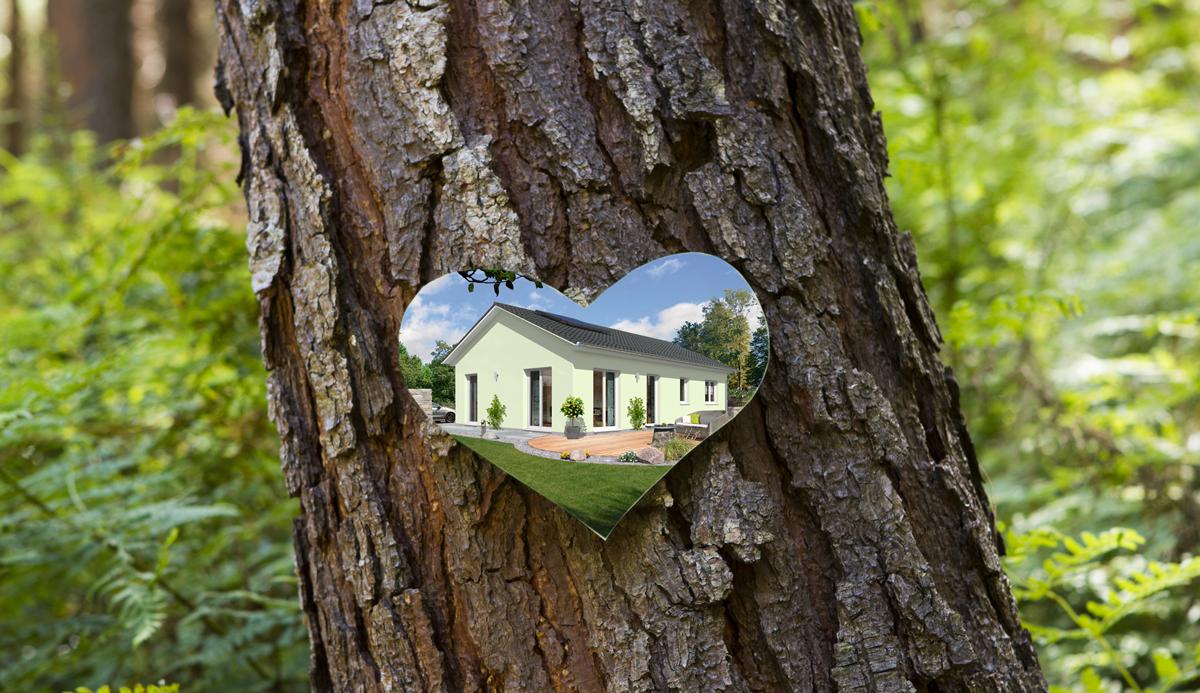 Internationaler Tag des Waldes: Der Natur etwas zurückgeben!