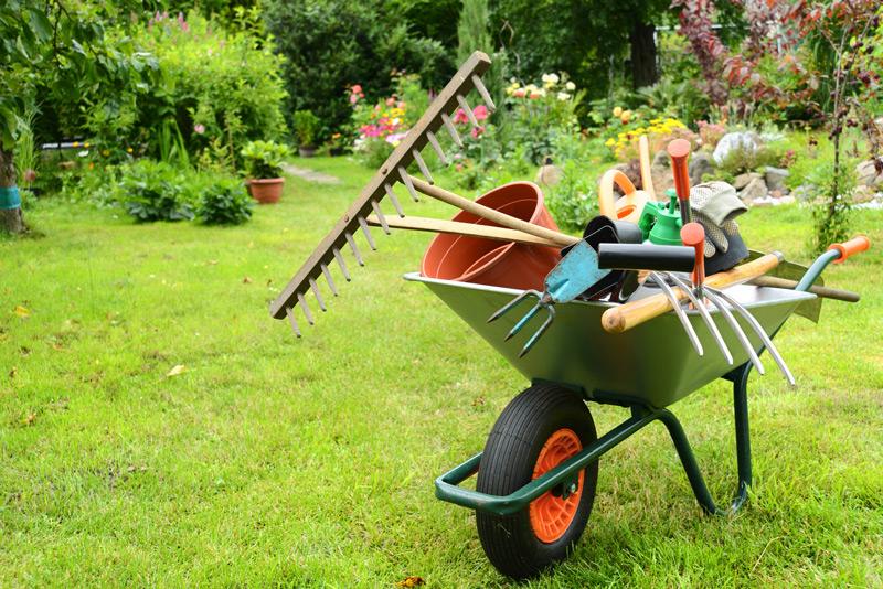 Gartentipps für den April