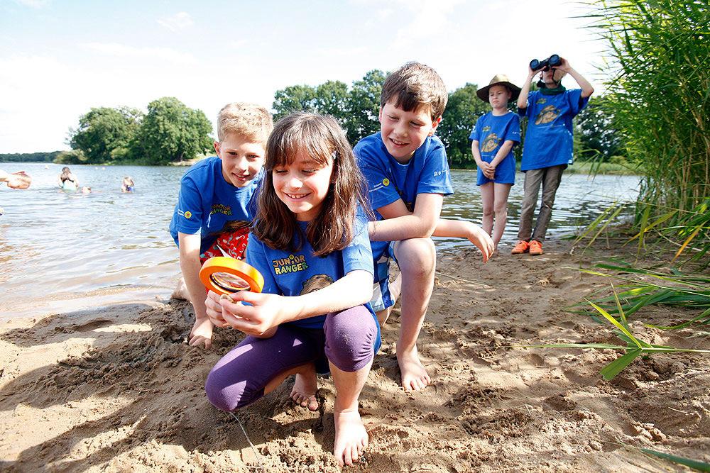 Die Natur spielerisch entdecken – Town & Country Haus unterstützt Junior-Ranger Programm