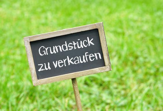 Fallen beim Grundstückskauf – Interview mit Baurechtsexperte Joachim Höhl