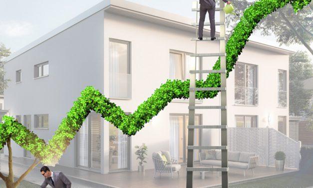 Nachhaltiges Unternehmertum im Franchise