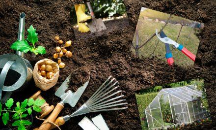 Garten und Terrasse auf den Frühling vorbereiten