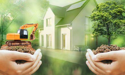 Von Bäume fällen bis Bodenverdichtung – Hausbau und Naturschutz widersprechen sich nicht
