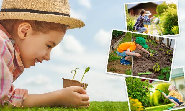 Wie gestalte ich meinen Garten kinderfreundlich?